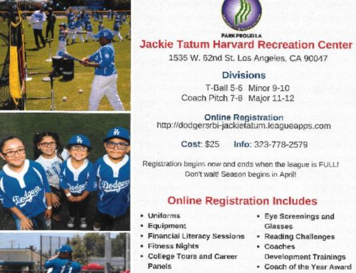 Sign Up for Dodger Youth Baseball Now