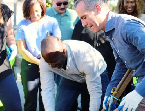 Vernon Tree Planting Brings Out Community